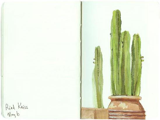 Lisa Hebden ~ Marrakech Cactus Sketch
